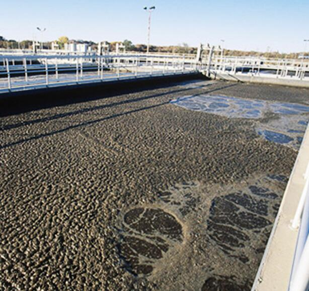 养殖场污水处理方案